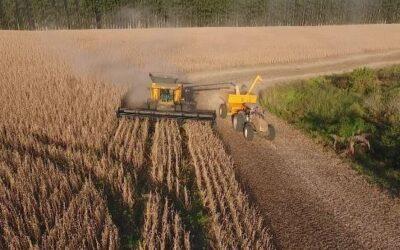 Agronegócio cresce 42,2% e puxa valor do PIB no Rio Grande do Sul